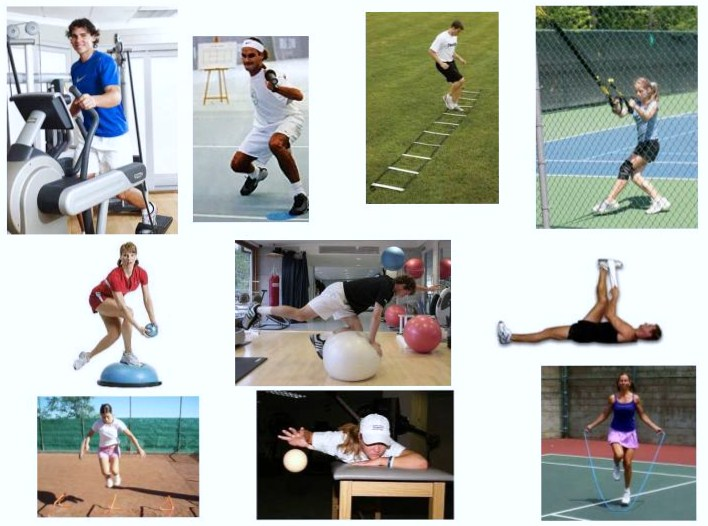 Fitness Programmes